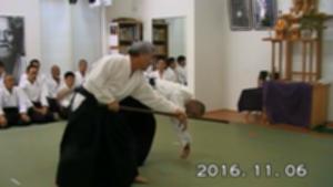 161106演武会_杖技