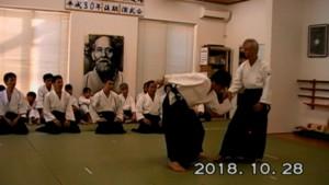 181028_説明演武